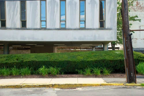 modern building, shrub and small plants