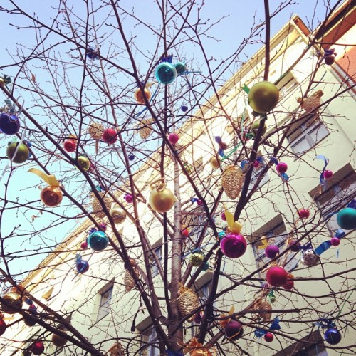 Leafless street tree with colorful glass ornaments